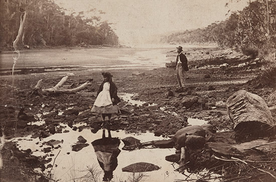 Unknown photographer / Australian scenery, Middle Harbour, Port Jackson c1865 / Art Gallery of New South Wales